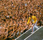 Freddie Mercury photos